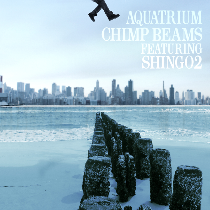 Chimp_Beams_aquatrium_cover