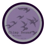 Chimp_Beams_Split_CPSV-002_A-Side_1